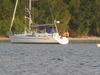 sail2wind